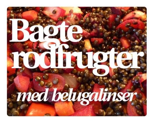 Belugalinser 1