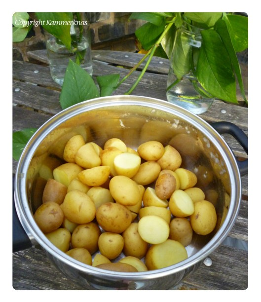 Kartoffelsalat med roastbeef 4
