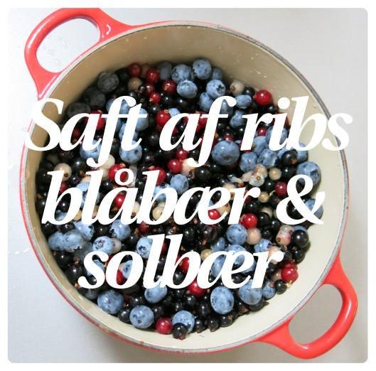 Saft af ribs, blåbær og solbær 1
