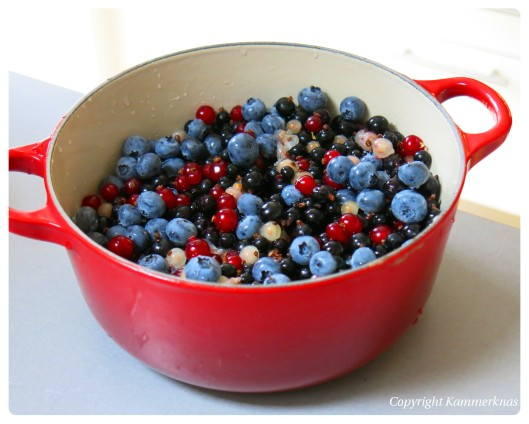 Saft af ribs, blåbær og solbær 3