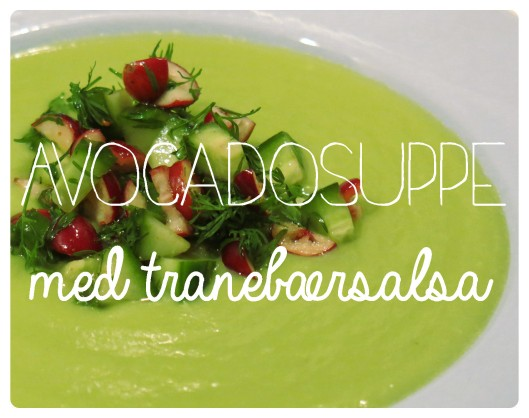 Avocadosuppe 1