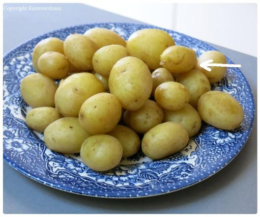 Cuvette og kartoffelsalat 2