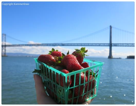 Jordbær 1