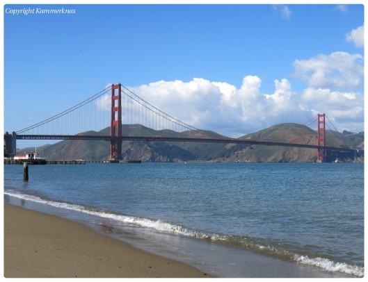 San Francisco sourdough 2
