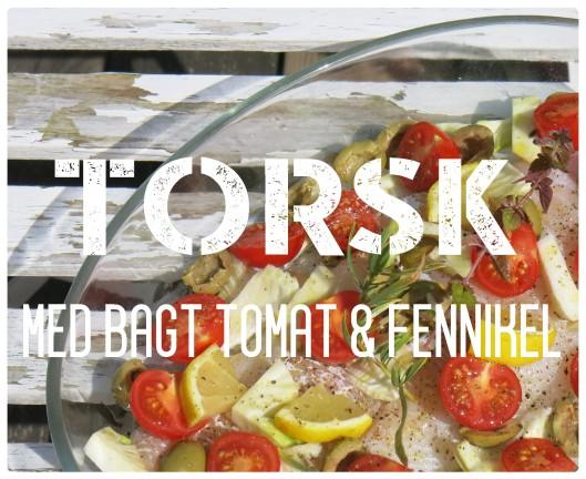 Torsk med bagt tomat og fennikel 1
