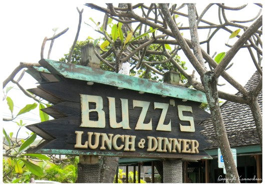 Buzz's Steakhouse 2