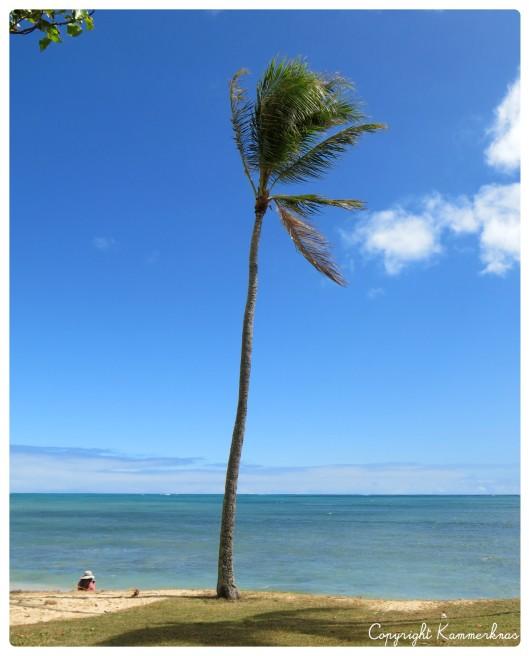 Oahu 1