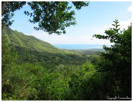 Oahu Kailua 1