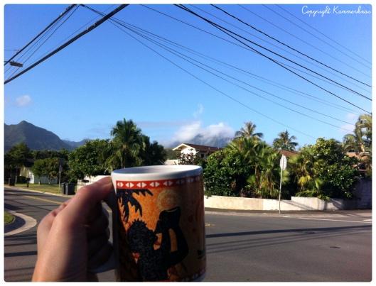 Oahu Kailua 4
