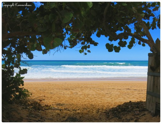 Oahu nordkysten 1