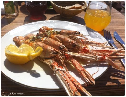 Jomfruhummer Seafood 1