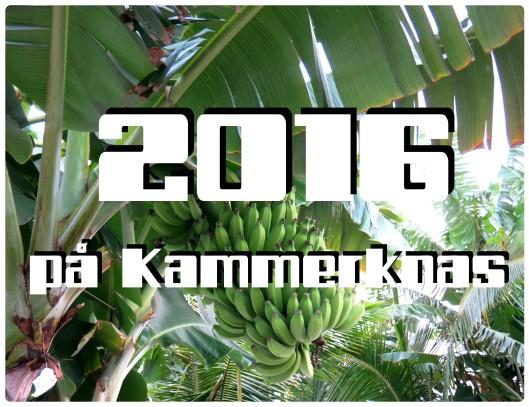 2016-pa-kammerknas-1